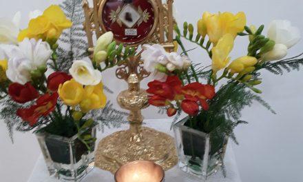 Fiesta de la Madre Pierina