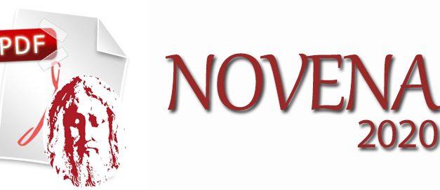 Novena y Fiesta Divino Rostro 2020